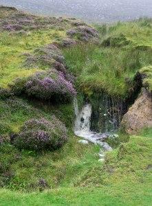 Ireland_AI_waterfall