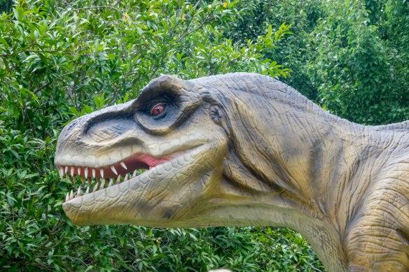 HVG_T-rex